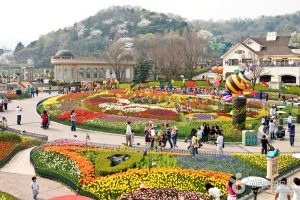 Công Viên Everland: Thế Giới Giải Trí Nổi Tiếng Nhất Hàn Quốc