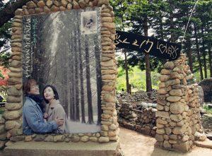 Du Lịch Đảo Nami - Khám Phá Thiên Đường Du Lịch Hàn Quốc