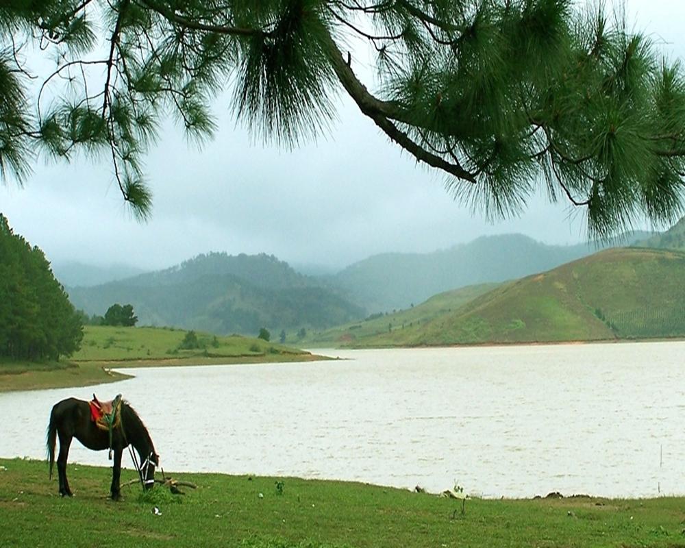 Du ngoạn Đà Lạt trong ngày: Làng Cù Lần – Hồ Dankia – Langbiang
