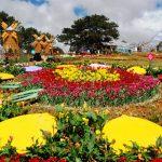 Rực rỡ Festival Hoa Đà Lạt
