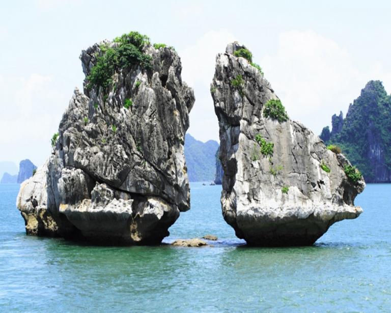 Tham quan vịnh Hạ Long