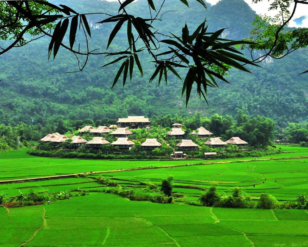Du lịch Mộc Châu - Thung lũng Mộc Châu