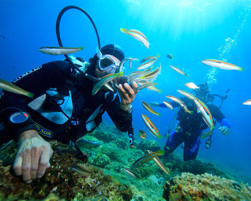 Du lịch Nha Trang giá rẻ – Thám Hiểm Đại Dương Tại Đảo Khỉ