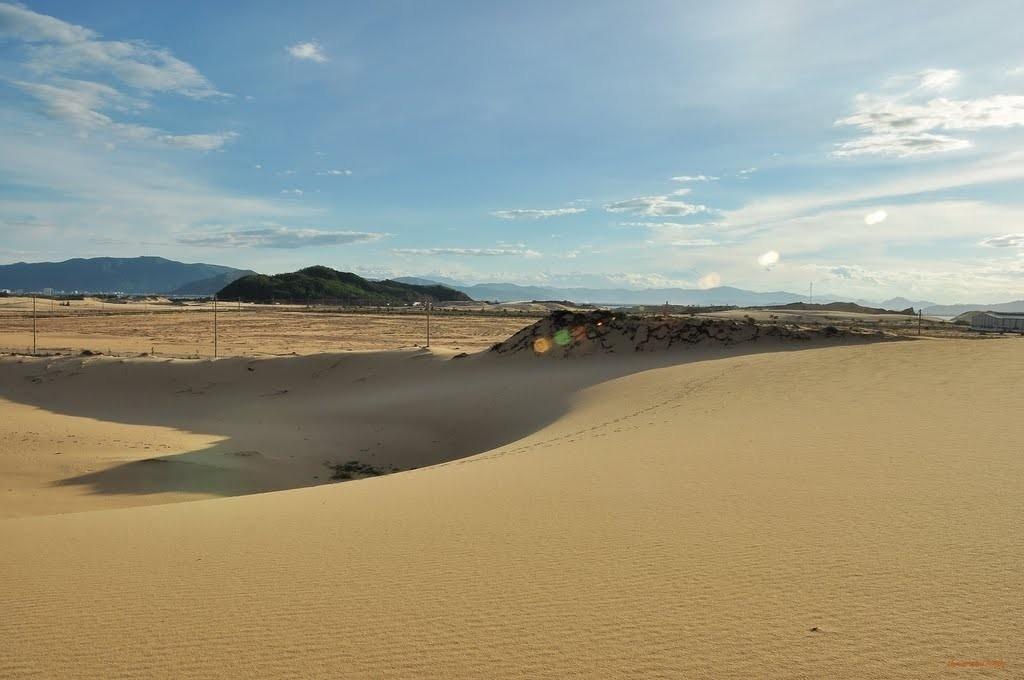 Hoạt động giải trí ở Quy Nhơn - Đồi cát Phương Mai