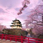 Trải nghiệm không thể bỏ qua khi du lịch Nhật Bản