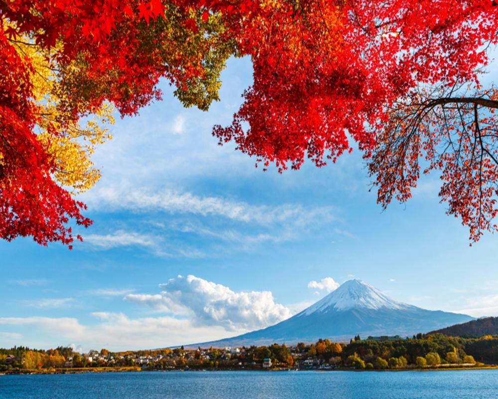 Du Lịch Nhật Bản 2019 Hành Trình Vàng: Hà Nội – Tokyo – Phú Sỹ – Yamanashi – Nagoya – Kyoto – Osaka