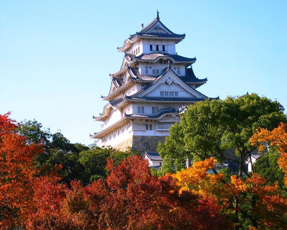 Du Lịch Nhật Bản Từ Hà Nội: Tottori – Bảo tàng mỹ thuật cát – Osaka