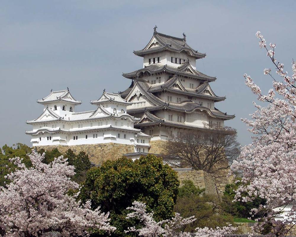 Tour Nhật Bản 6N5Đ: Osaka – Kobe – Nagoya – Yamanashi – Tokyo