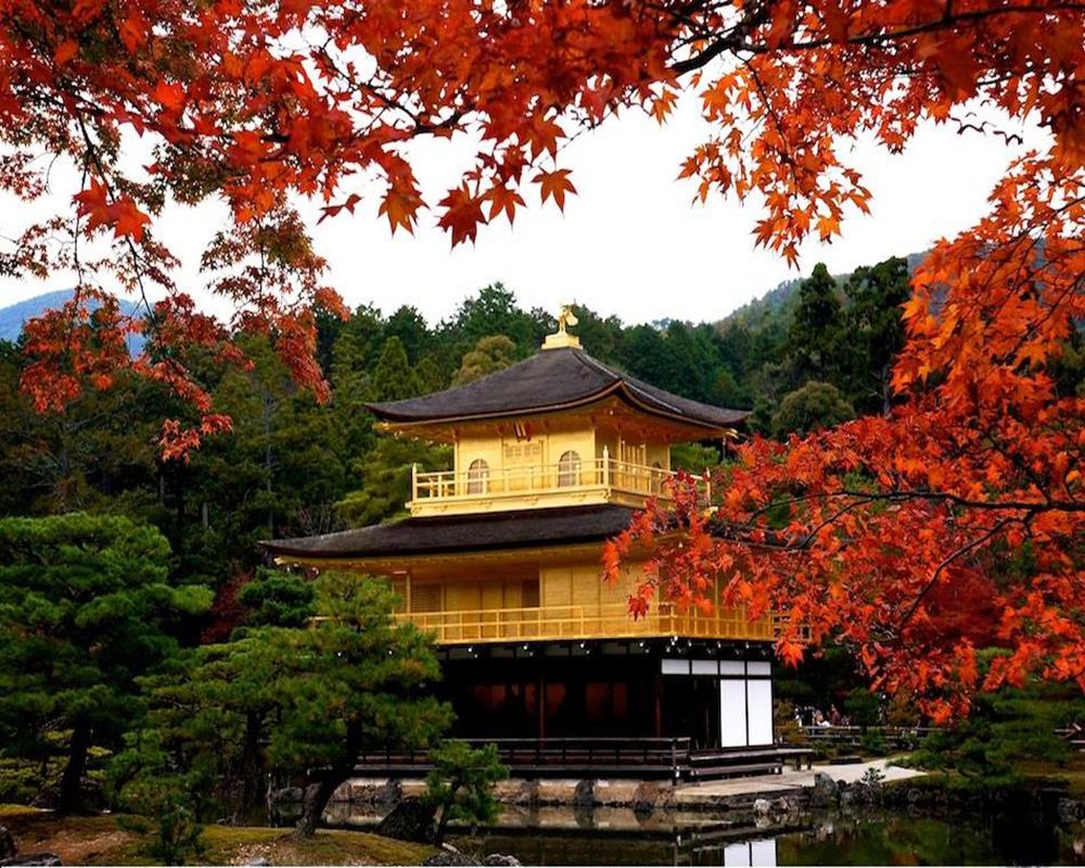 Tour Nhật Bản Khởi Hành Từ Hà Nội: Osaka – Kobe – Kyoto – Phú Sỹ – Tokyo