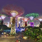 Singapore Khám phá những sắc màu về đêm