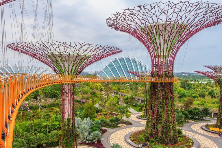Cây khổng lồ tại Garden The Bay - Tour Tết Nguyên Đán 2019
