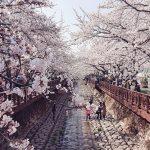 Du lịch Hàn Quốc và những điểm nổi bật