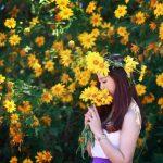 """Đằm chìm vào mùa hoa Đà Lạt – """"mùa xuân vĩnh cửu"""""""