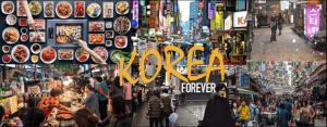 Xin visa du lịch Hàn Quốc tự túc