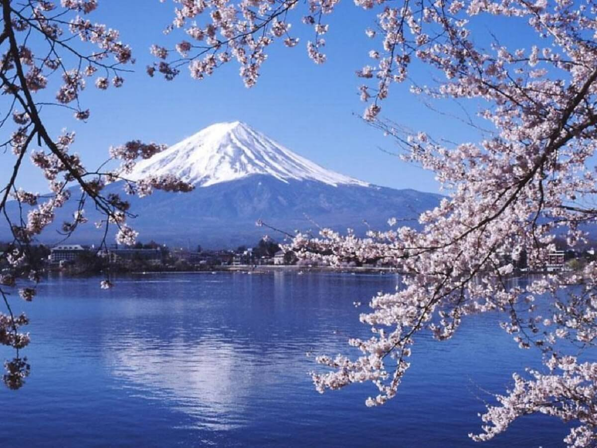 Du xuân tại Nhật Bản