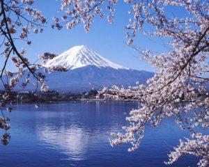 Du lịch tại Nhật Bản 5 ngày 4 đêm