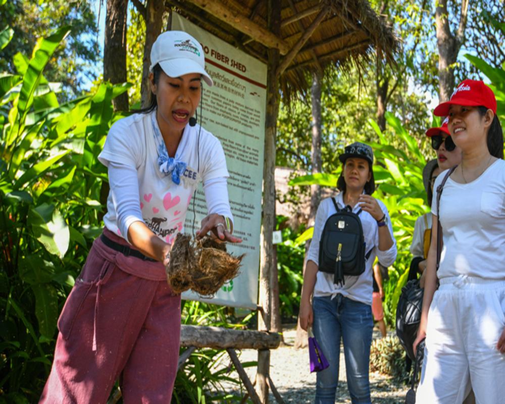 """Trải nghiệm siêu """"dị"""": tự tay làm giấy từ phân voi ở Thái Lan"""