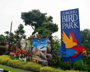 Kinh nghiệm khám phá vườn chim Jurong khi du lịch Singapore