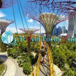 Khám phá vườn thực vật Gardensby the Bay, Singapore
