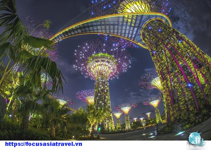 vườn thực vật Gardens by the Bay Singapore