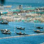 Review kinh nghiệm du lịch Huế từ Đà Nẵng để tiết kiệm chi phí