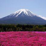 du lịch Nhật 6N5Đ