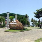 Khu du lịch tổ hợp công viên Cá Voi có gì hay?