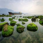 Rạn Nam Ô – Địa điểm du lịch Đà Nẵng