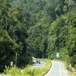 Vườn Quốc Gia Phú Quốc – Trải Nghiệm Cung Đường Xuyên Rừng Cực Đã