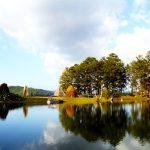 Thung lũng Vàng Đà Lạt: Địa điểm check-in hot nhất hiện nay
