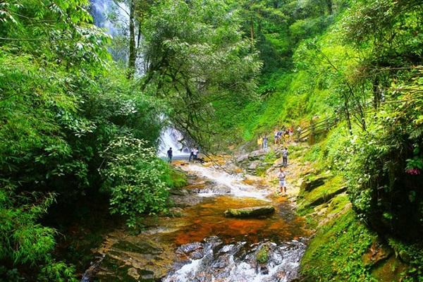Vườn Quốc Gia Phú Quốc - Trải Nghiệm Cung Đường Xuyên Rừng