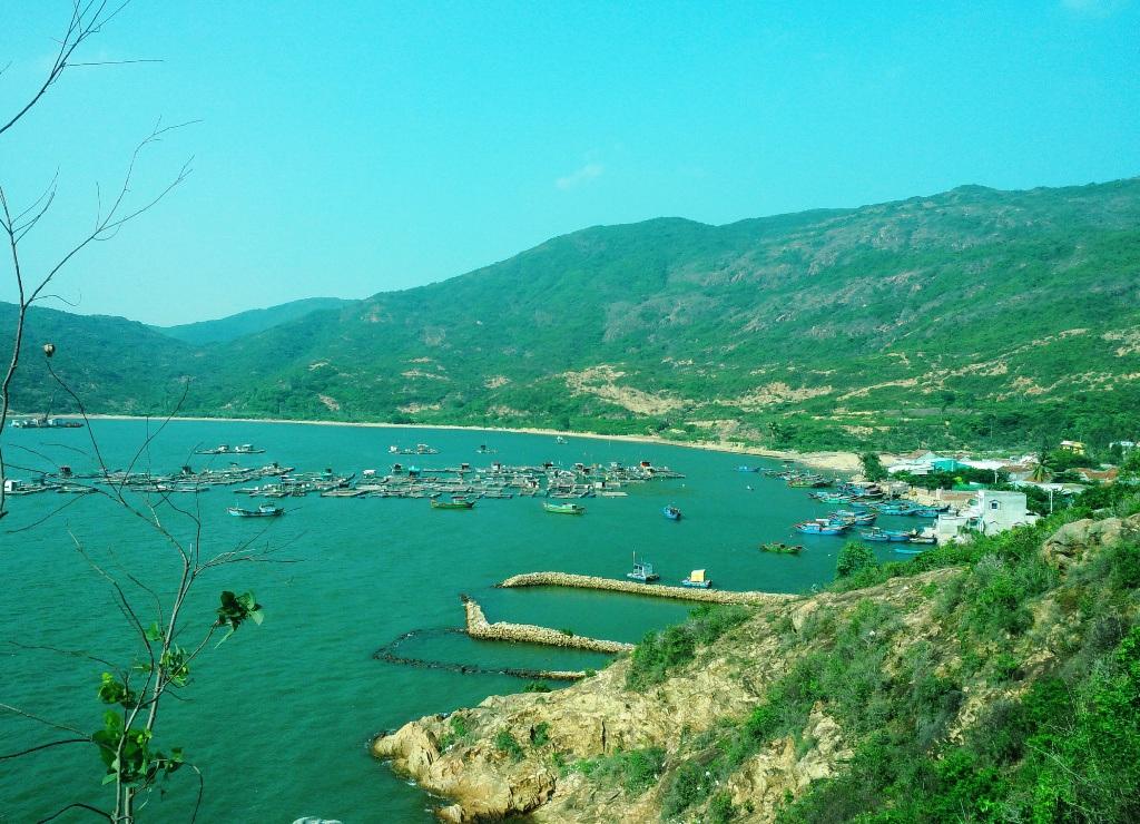 Kết quả hình ảnh cho làng chài hải minh quy nhơn