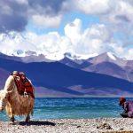 địa điểm du lịch Tây Tạng