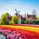 Những lễ hội tại Hà Lan rực rỡ sắc màu thu hút du khách