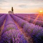 vườn hoa đẹp ở Pháp