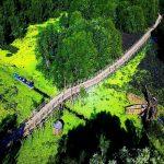 những cây cầu nổi tiếng miền tây