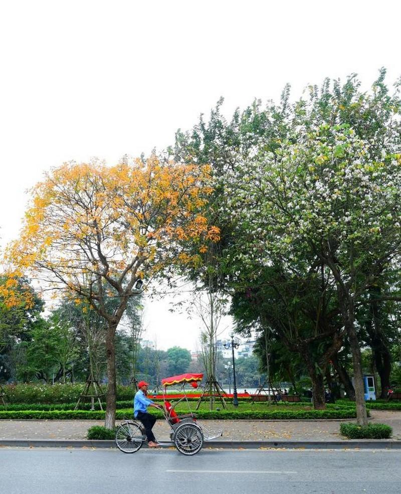 Hà Nội vắng lặng và yên bình tuyệt đẹp giữa tháng 3