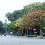 Những sắc đỏ, vàng, xanh hòa quện cùng nhau tạo nên một bức tranh Hà Nội nhiều màu sắc.