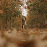 Check in Bình Dương: Ngắm rừng cao su thay lá đẹp như phim Hàn